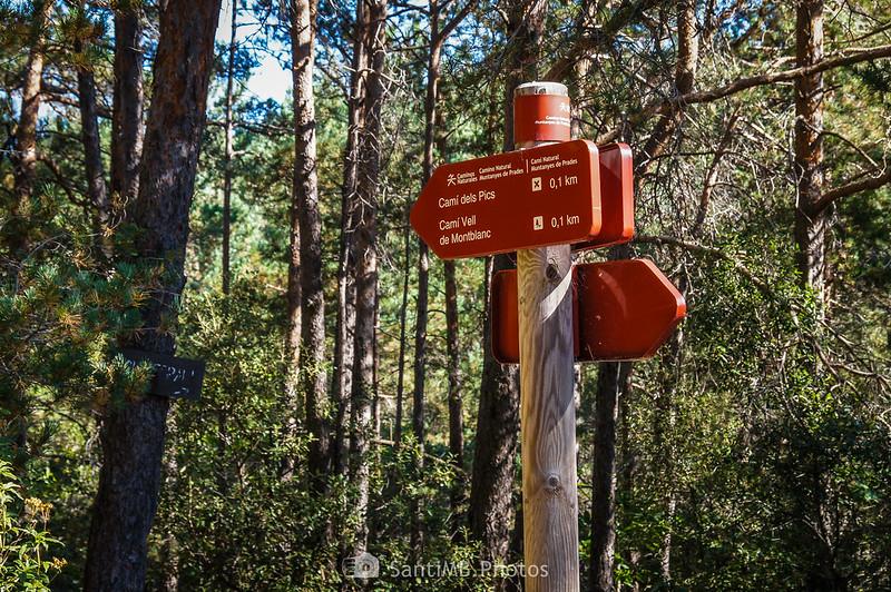 Cruce de caminos en el Camí Natural Muntanyes de Prades