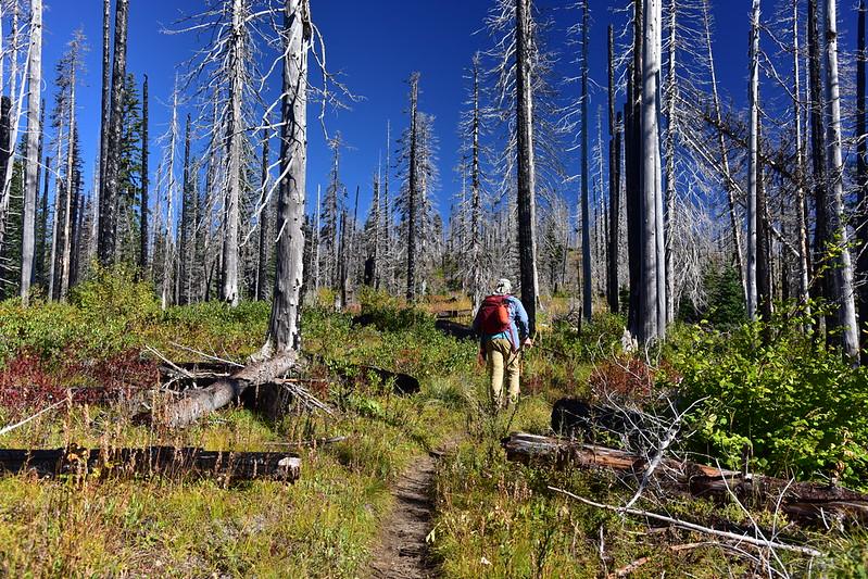 Stagman Ridge Trail