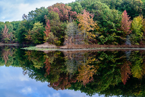 landscape statenisland highrockpark autumn reflection sigma d800 2470mm