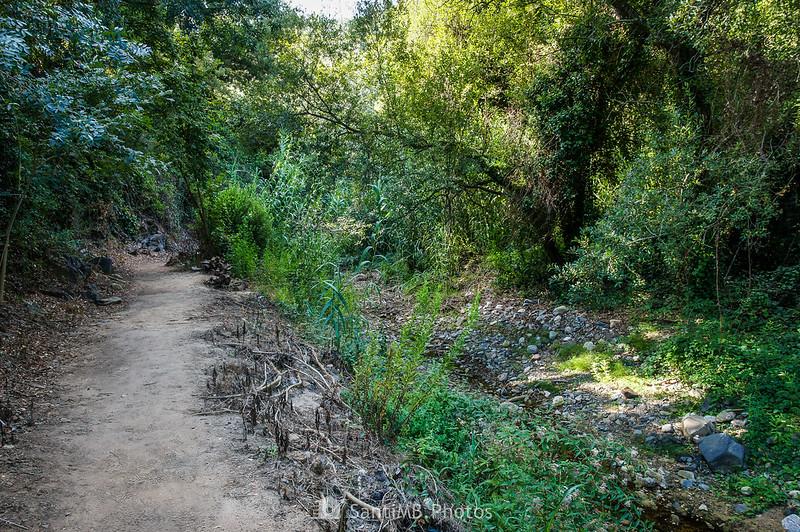 Camí del Rec junto a la riera de La Selva