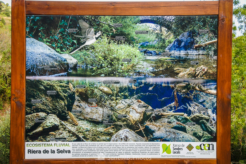 Panel informativo con la fauna y flora de la riera de La Selva