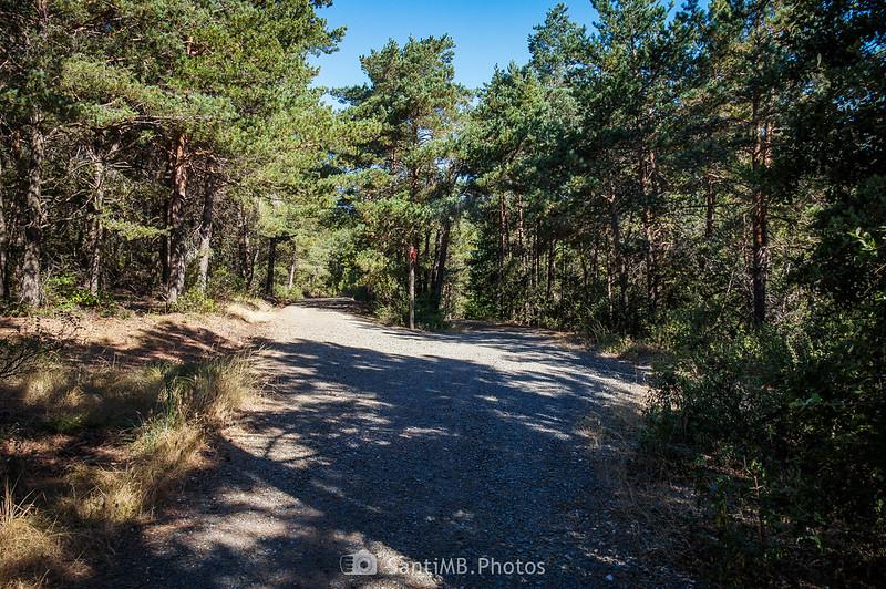 Bifurcación del Camí Natural Muntanyes de Prades en los Plans del Gendral