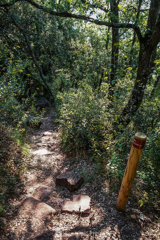 Continuación del Camí Natural Muntanyes de Prades debajo de la ermita de l'Abellera
