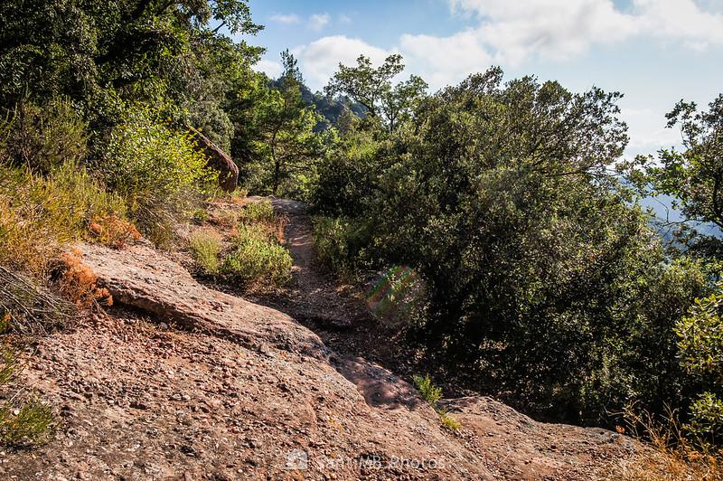 Camí Natural Muntanyes de Prades