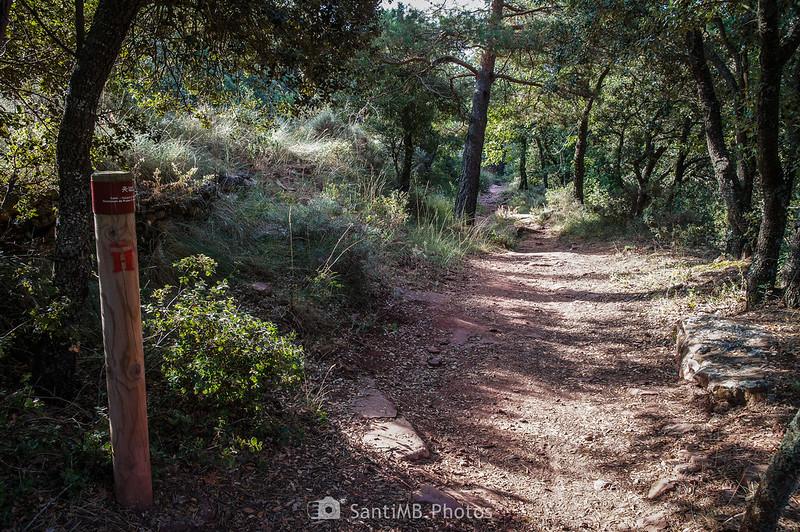 Camí Natural Muntanyes de Prades hacia l'Abellera
