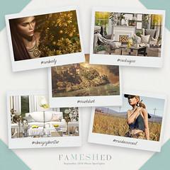 FaMESHed Top 5 ! September