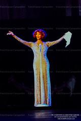 Whitney Houston, Hologram Tour.