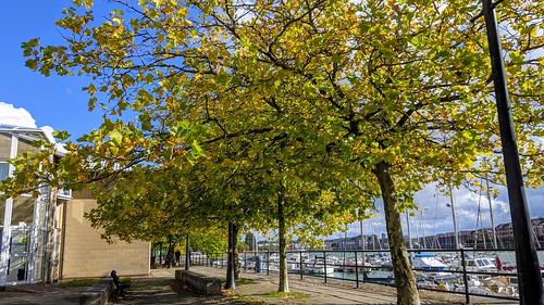 Autumn at Preston Docks | by Tony Worrall