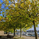 Autumn at Preston Docks