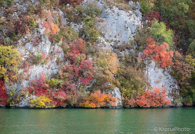The color of autumn, Danube, Romania
