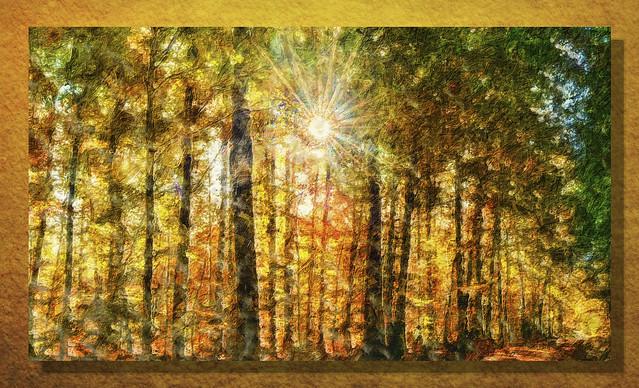 breathe in autumn colors