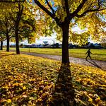 Power Walk, Uppsala, October 23, 2020