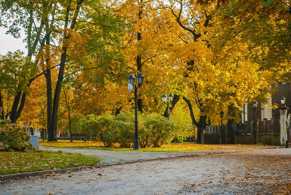 Beautiful fall colors.  12:05:52 DSC_8726