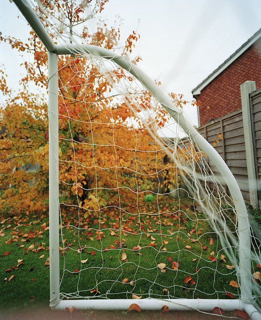 AUTUMN GOAL - STAY SAFE AND WELL!