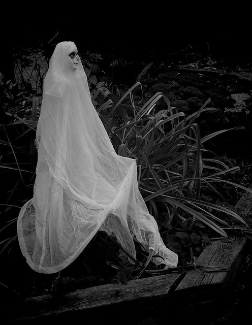 Like a Ghost, I'm Gonna Haunt You