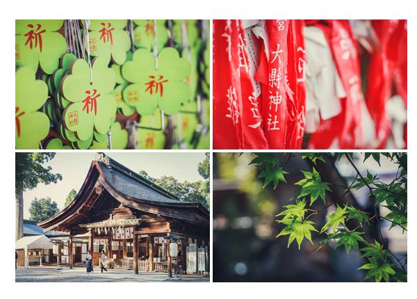 大縣神社で七五三 絵馬は四葉のクローバー 愛知県犬山市