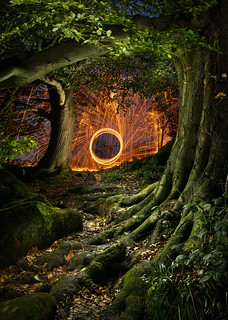Forest portal | by J C Mills Photography