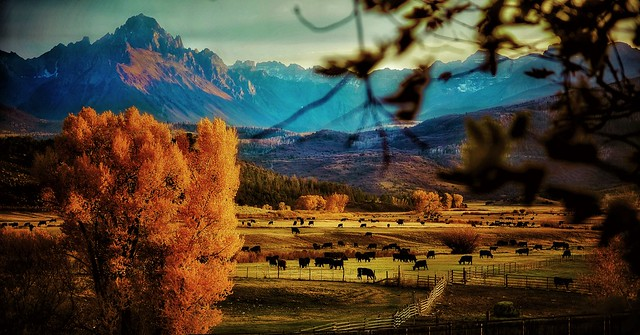 Ridgeway,Colorado