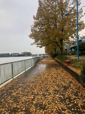 Autumn on the quay