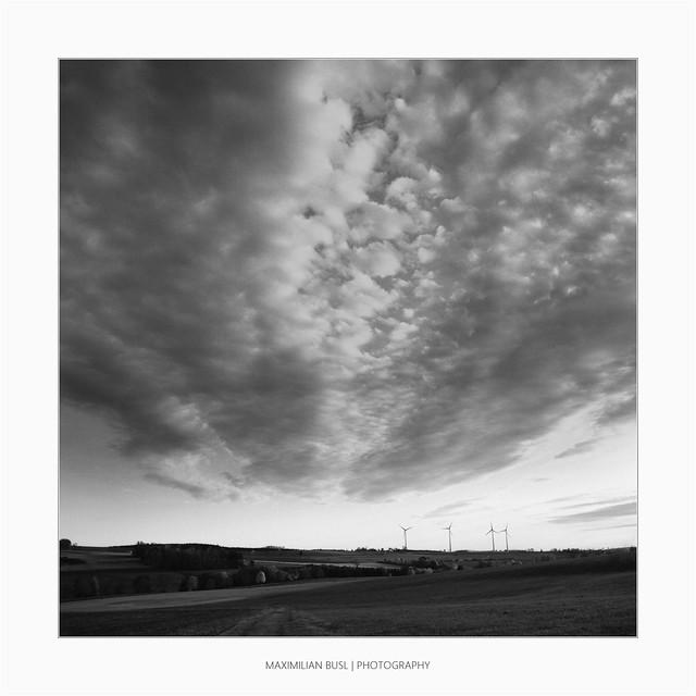 Analogue Autumn (II)
