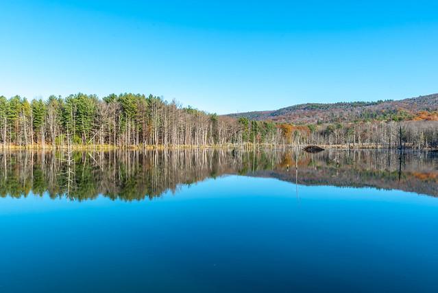 Random pond in Berkshires!