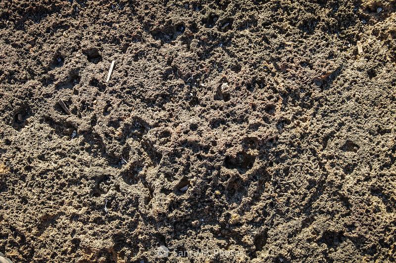 Textura de la roca de la playa anexa a El Molar