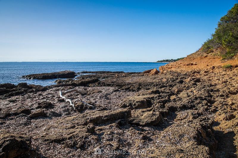 Playa rocosa entre el Llosar de Cavaller y l'Adolç del Me