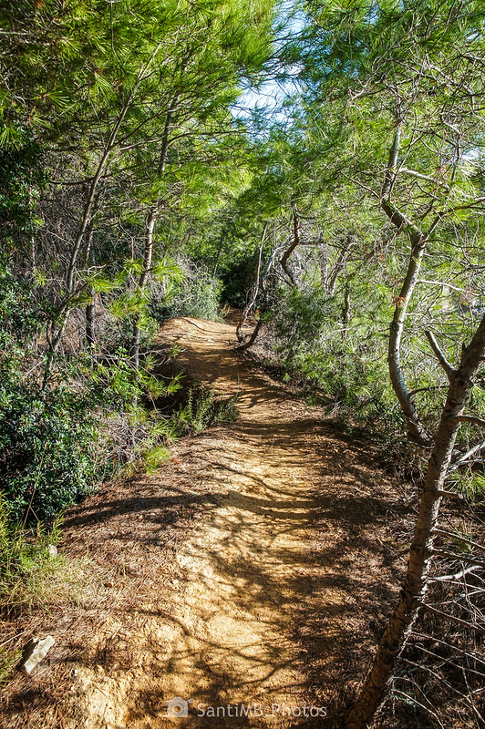 Camino de Ronda entre el Llosar de Cavaller y la Cala Garretes