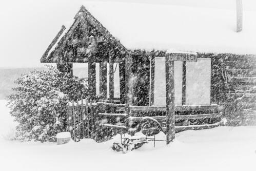 washington winter canon 7d snow molson serene