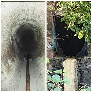 Drains for springs