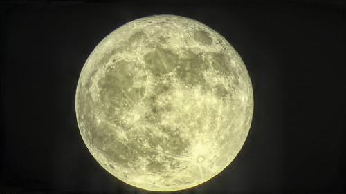 Full Moon Blue Moon Halloween Moon