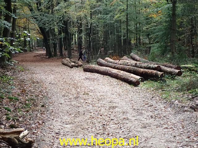 2020-10-31     Krachtighuizen   32 km  (84)