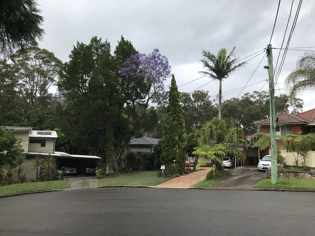 20201101 Carlingford, NSW