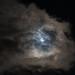 Blue Moon - Halloween 2020