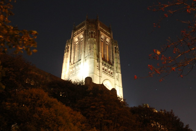 GARDEN OF THE ANGLICAN CATHEDRAL