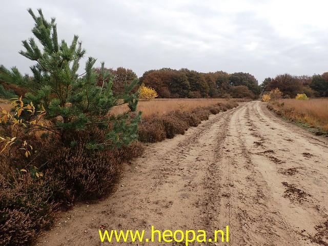 2020-10-31     Krachtighuizen   32 km  (45)