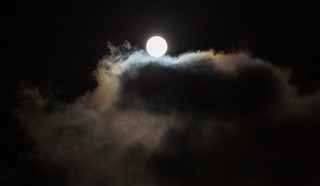 Blue Moon - Halloween 2020 | by Andrea Peddle