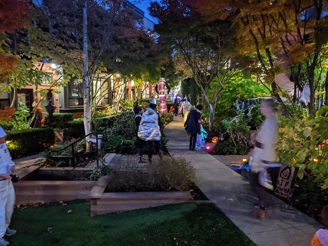 Courtyard Halloween