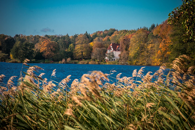 Holsteiner Herbst