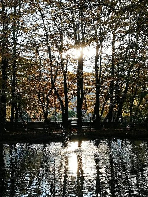 Riflessi nel Parco  -  Reflections in the Park