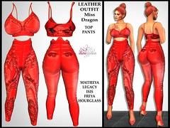 LEATHER OUTFIT Miss Dragon