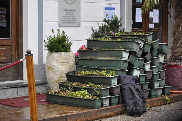 Oberösterreich Hallstatt_DSC0930