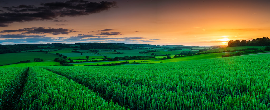Studham sunset pano
