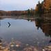 Pink Lake vista 2
