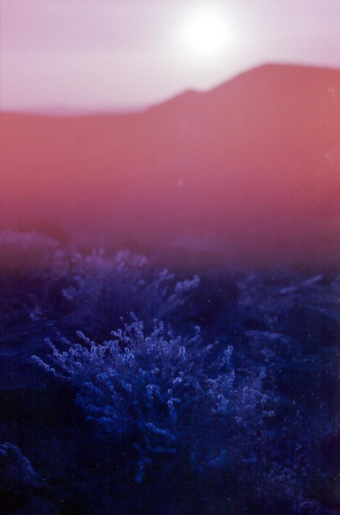 blazing sun recedes, Mojave Desert