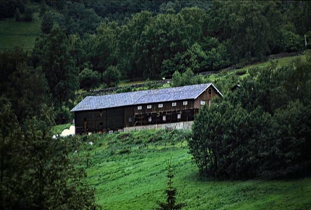 Norwegen 1998 (763) Gudbrandsdalen