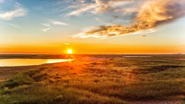 coucher de soleil sur les prés salés