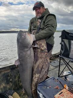 Photo of man holding a large blue catfish
