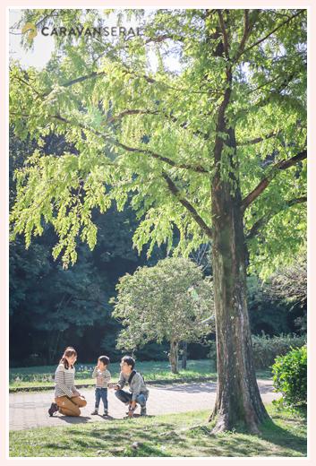 メタセコイアの木と一緒に家族写真 公園でファミリーフォト