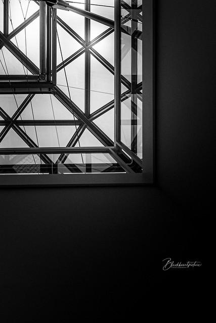 Darkroom Daydream3